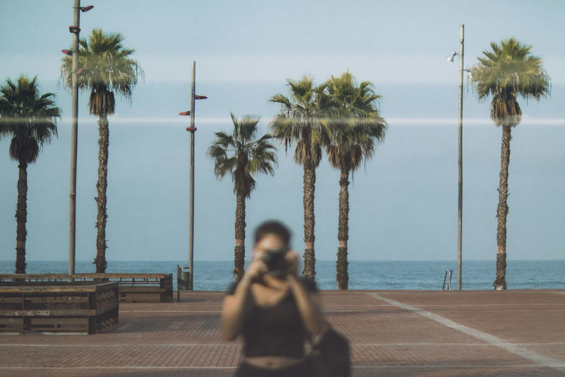 Man sitting on palm trees at beach against sky
