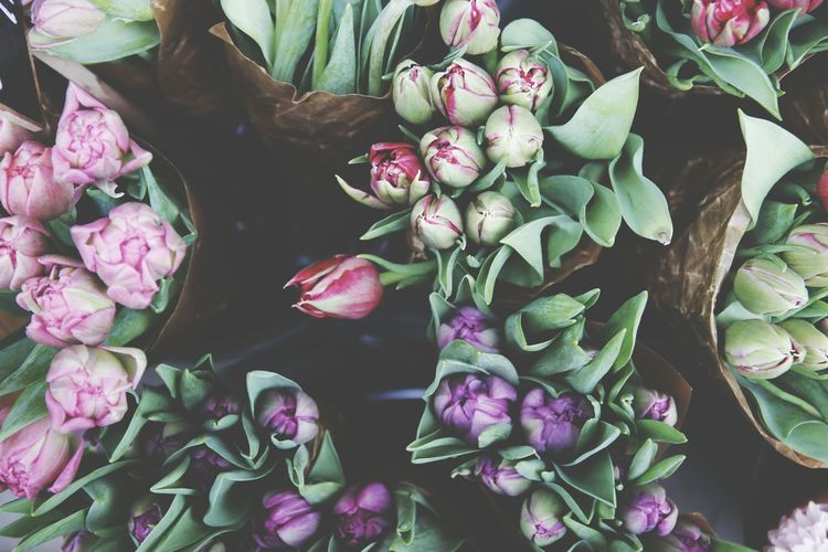 High angle view of tulips at flower market for sale