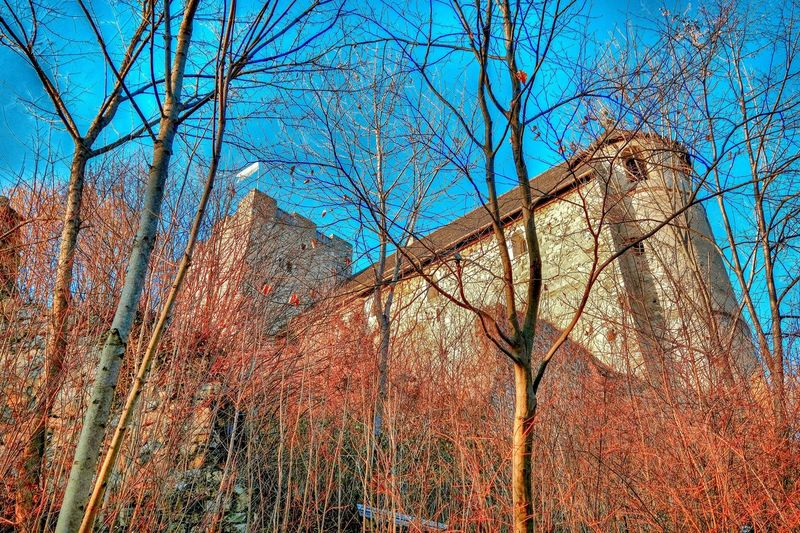 The castle was built in the 11th century; A first mention is known from the year 1042. The ruins of the rock castle stands at 574 m above sea level on a narrow ridge on steep cliffs above a former Roman road: The foothills of the Stone Graukogel (742 m above sea level) are today called Göstinger Ruins Mountain. Eyeem Marketplace Eyeem Market Stimmung Färben Memories Ausflug  Vacances Ewigkeit Spledida Past Passato Wood Made Of Stones Historical Building Herbst Castello