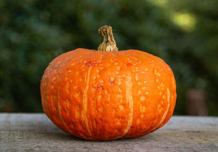 Close-up of orange pumpkins on table