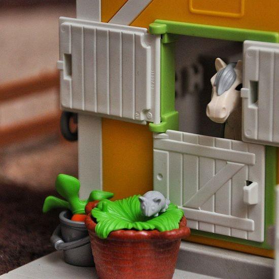 Und noch ein Foto vom neuen Playmobil Pferdehof im Kinderzimmer ... macht Spaß ;)