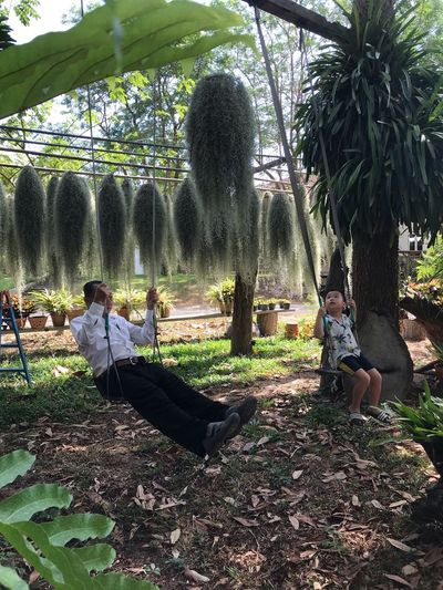 Plant Tree Real People Nature Day Growth Sunlight Togetherness Leisure Activity Lifestyles Girls Males  Park - Man Made Space Boys Shadow Outdoors Men Child Park Childhood