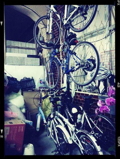 我家真的不是腳踏車店