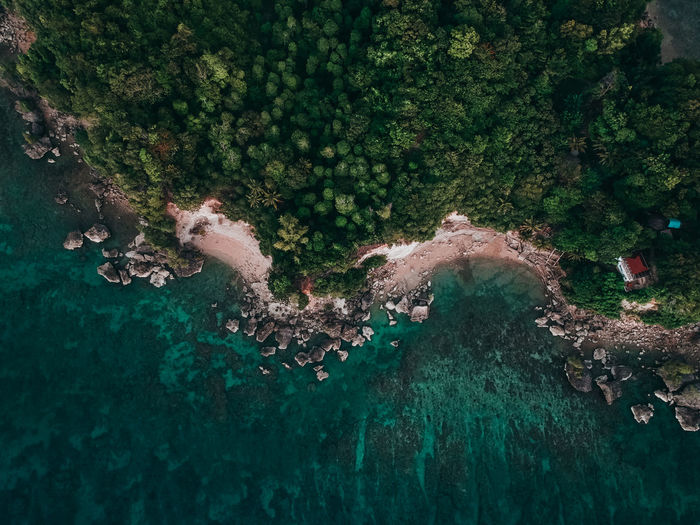 Behind the cliff EyeEm Best Shots EyeEmNewHere ASIA Photography Travel Dji Aerial View Sea Cliff Green Ocean Vacations Destination Philippines Tropical Climate Summer Adventure Drone  Blue Shore Beach Nature Tree Water High Angle View UnderSea Green Color Leaf Vein Sandy Beach Sand