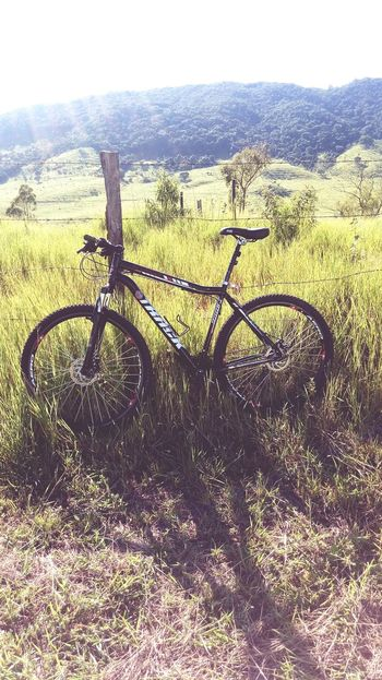 😀💪✌ Field Day Outdoors Bicycle Nature Beauty In Nature