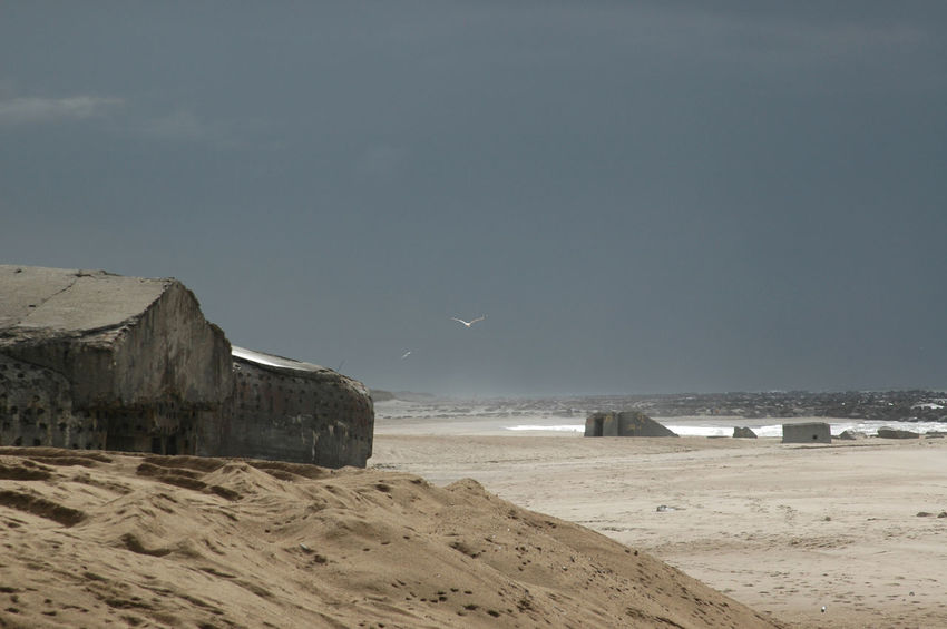 """Remains of the """"Atlantic Wall"""" at the beach in Denmark. These Bunkers remain at the beach after having been abandoned at the end of WW2 Bunker Nature WW2 Leftovers Beach Beauty In Nature Bird Day Fortress Horizon Over Water Landscape Nature No People Outdoors Sand Scenics Sea Sky Stronghold Water Wave Ww2"""