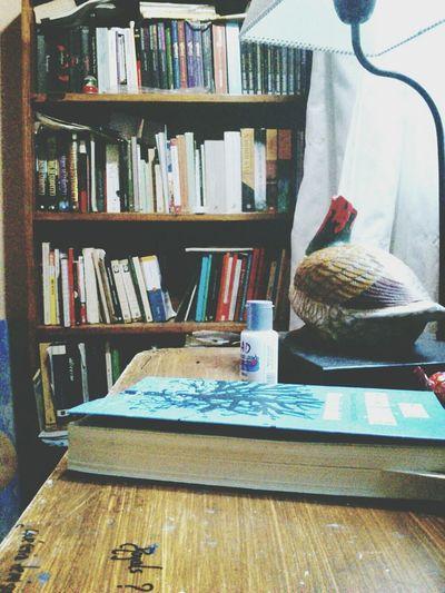 Habitacion. Biblioteca. Escritorio. Habitación Pato Book García Marquéz