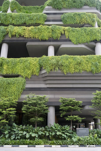Singapore architecture Outdoors Singapore Architecture Architecture_collection Architecture Photography Architectural Feature Plant Growth Green Color No People Nature Day Hedge Beauty In Nature Built Structure Topiary Garden In A Row Bush Leaf Potted Plant Sunlight Plant Part Gardening Park Royal
