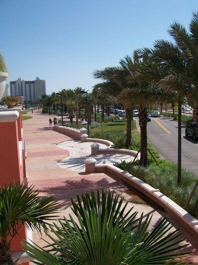 Florida Clear Waters Beach Ocean City Palms Sidewalk Hotels View Road