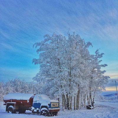 Snow trucked. • Tstcanada w @travelyukon @explorecanada • Exploreyukon Explorecanada • Socialtravel Travel Canada Yukon Westfalia T2 Roadtrip •