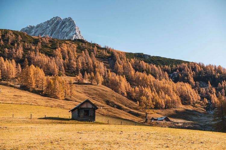 Wooden cabin in colorful autumn landscape above a sea of clouds, filzmoos, salzburg, austria.