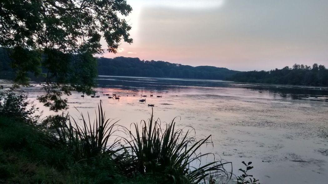 Abendstimmung am Baldeneysee Landscape Lake Enjoying Life Baldeneysee