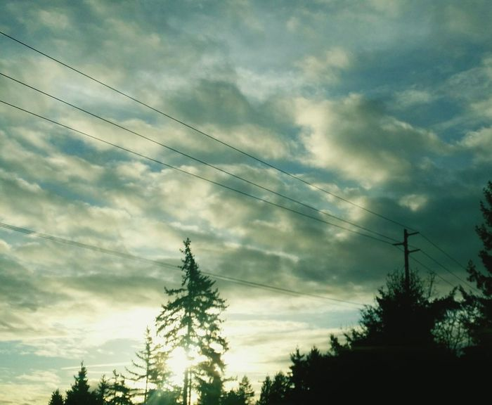 Trees Onadrive Highway Beautiful Sky Landlines