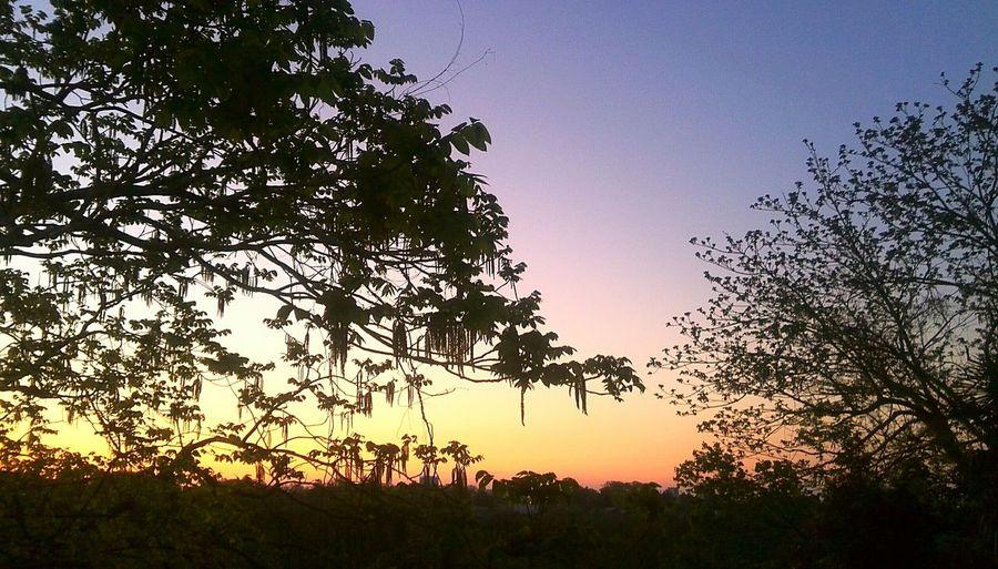 ゴールデントライアングル        タイ ラオス ミャンマーの国境が交差する場所。また、タイ チェーンセンから中国 雲南までのスローボートが出る。この写真は多摩川の写真です。 最近 EMが開けないのでインスタに行ってます。インスタも見てね。EyeEm Nature Lover ASIA