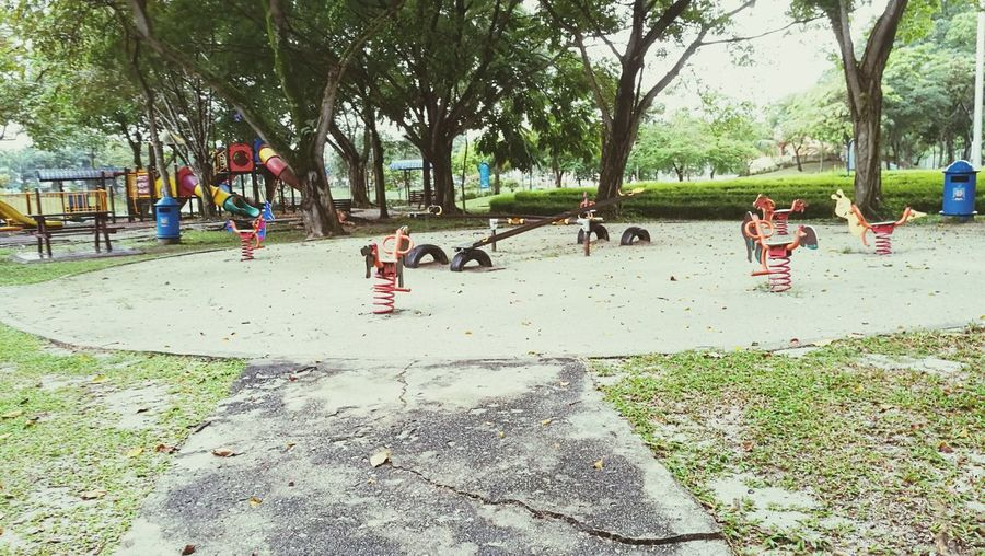 Playground Outdoors Nature Tree Day