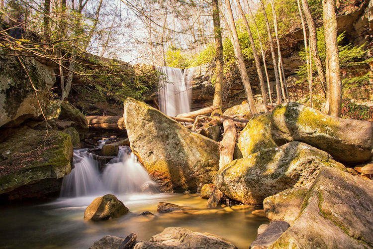Gorgeous day at Cucumber Falls at Ohiopyle State Park in Ohiopyle, PA Water Tree Waterfall Nature Outdoors No People Forest Day Beauty In Nature Cucumber Falls Ohiopyle Neighborhood Map