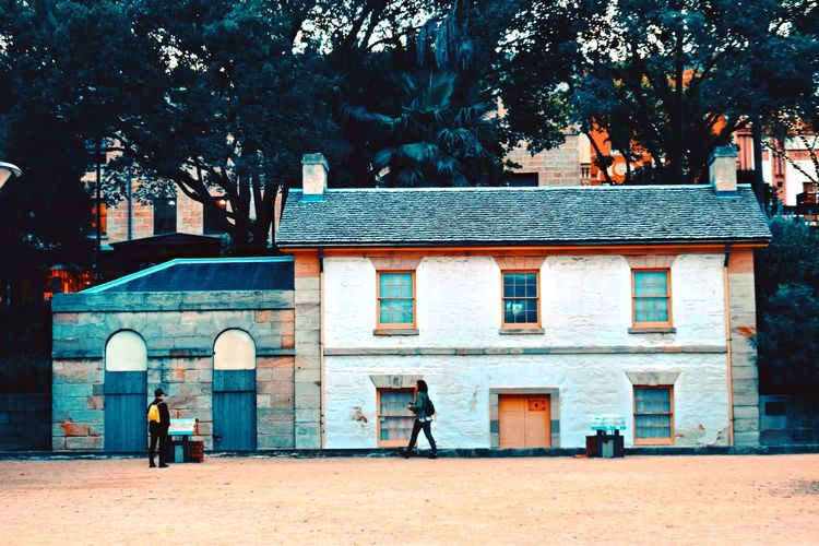 Cottage Historic Colours Architecture EyeEm Outdoors Picoftheday Photooftheday Photography EyeEm Gallery Architecture Building Exterior Built Structure Tree Nature Day Building Plant Door No People Outdoors Sunlight Land Window Entrance City Store Standing