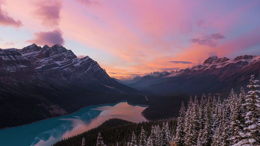 Peyto Lake Mountain Landscape Pinaceae Night Awe Snow Tree Space No People Beauty In Nature Scenics Mountain Peak Outdoors Beauty In Nature Sky Water Nature Day Winter Tree Sunset Banff National Park  EyeEmNewHere Jasper National Park Peyto Lake