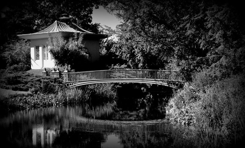 Arch Bridge Architecture Beautiful Black And White Blackandwhite Blackandwhite Photography Bridge Check This Out Chinese Footbridge Hello World Monochrome Nikon Nikon D3200 Outdoors Peace And Quiet Reflection River Riverside Showcase: January Staffordshire The Shugborough Estate Water 100likes
