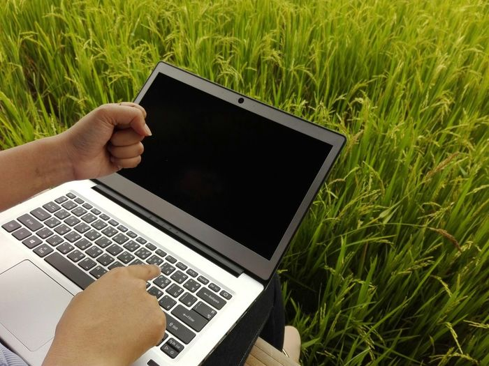 Cropped hands of woman using laptop by crops on field