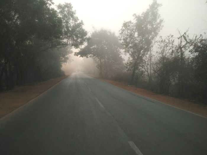 Deserted road disappearing into distance in early morning mist. Fog Foggy Foggy Morning Mist Misty Morning Early Morning Early Morning Fog... Early Morning Mist Empty Road Silhouette Road Alone Calm Peaceful No Traffic Deserted Road Country Road Goa Street Tranquil Morning Morning Fog... Early Morning Ride Travel Trees Lost In The Landscape