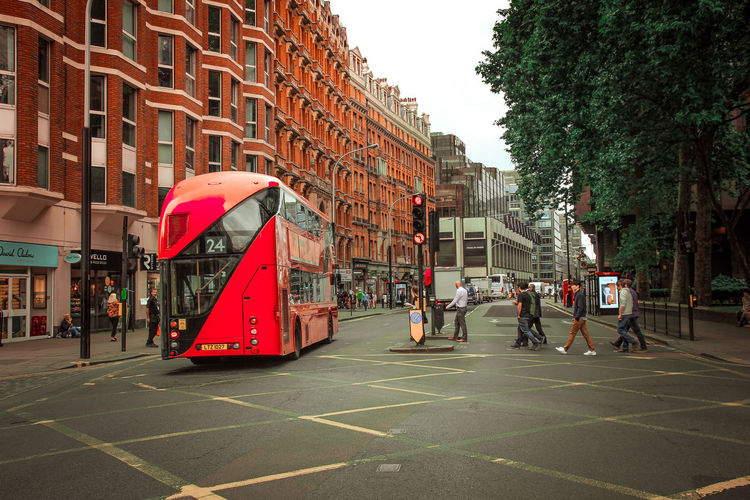 Red Bus in
