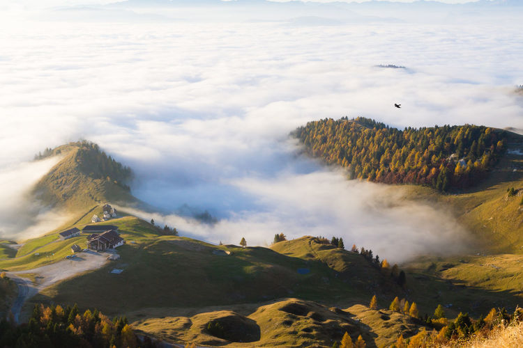 Clouds under mountains. Mountain landscape Landscape Landscape_Collection Landscape_photography Scenery Monte Grappa Clouds Cloudscape Mountain Italy Alps Alpine Alpine Landscape Italian View Tree Mountain Tea Crop Dawn Beauty Fog Sunset Rural Scene Forest Agriculture Pine Tree Pine Woodland Pine Wood Coniferous Tree Snowcapped Mountain Mountain Range Mountain Peak