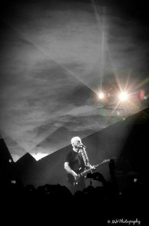 'David Gilmour Live 2015' Davidgilmour Pinkfloyd Music RoyalAlbertHall Live Gig Concert London England