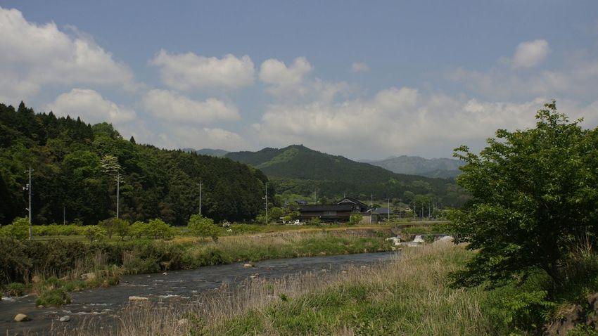 Tree Mountain Cloud - Sky Landscape Day Sky Takumar 28mm F3.5 Nex5