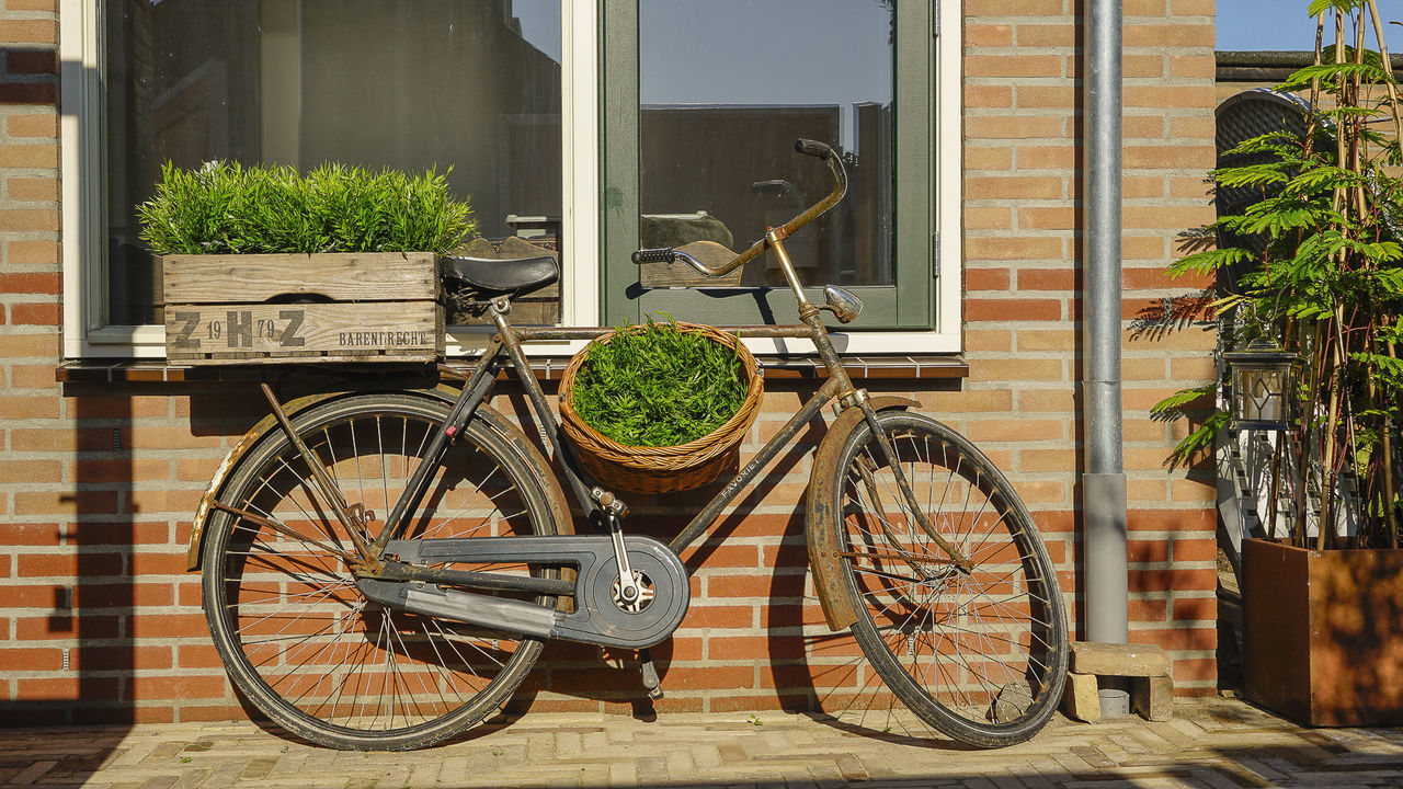 BICYCLE ON POTTED PLANT BY BUILDING