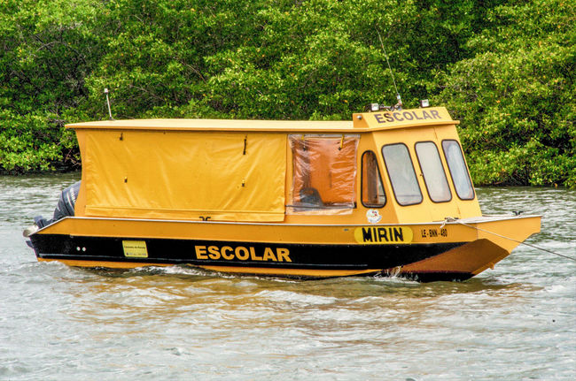 This is a very small city in Bahia, Brazil that start a slowly growth because the interest of a big oil company. This city is amazing natural and incredible beautiful. They are composed mostly of fishermen that live by and in the river. So, I saw this school bus.. Yeah, a school bus that actually was made in a boat. It get the kids from one side of the river to the other. How cool is that? First time that I saw with my eyes one of this. Paint The Town Yellow