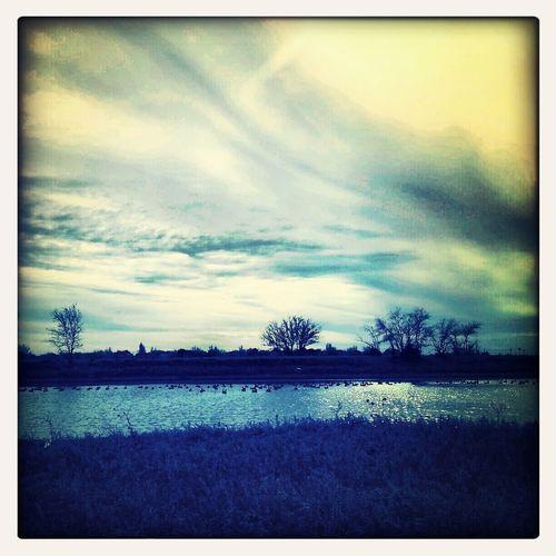 Crisp Windy Panhandle Winds Panhandle Skies
