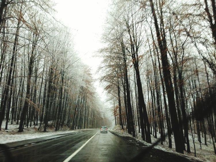 Snow Wintertime