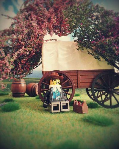 The Last Cowboy LEGO Toyslagram Toyslagram_lego Toydiscovery Toyphotography Toygroup_alliance Minifigs Toys4life Vitruvianbrix Minifigure Legogram Bricknetwork Brickcentral Legofan Instalego Justanothertoygroup Toycrewbuddies Toycommunity Toysaremydrug Toyplanet ToygraphyID Toyelites Toyartistry Toyunion Tcbc_flashyandactionpacked