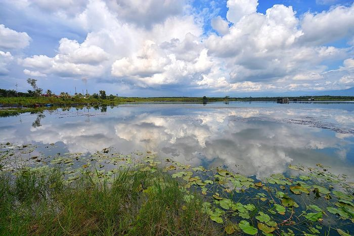Cloud - Sky Reflection Water Landscape Scenics Tranquility Sky Lake Nature Tranquil Scene Outdoors Day No People Beauty In Nature Blue Backgrounds Pond Pond Reflections Malaysia