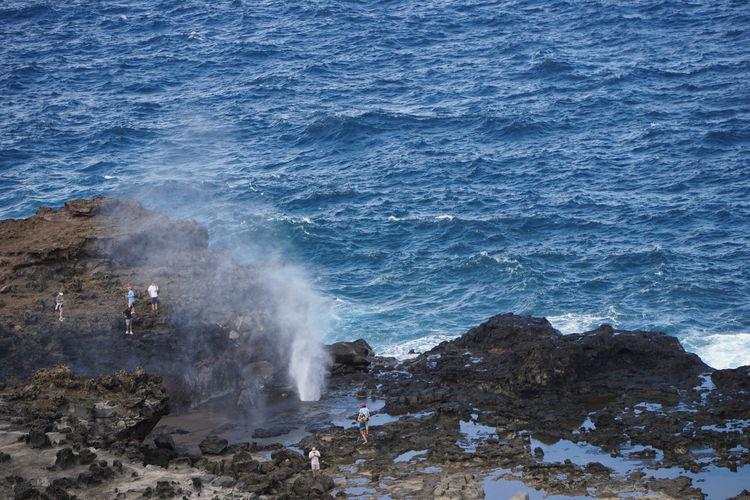 Maui Sea Water