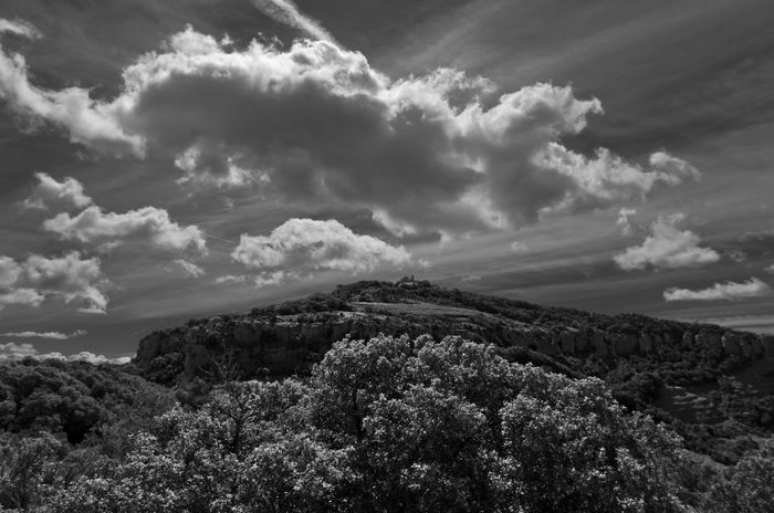 Beauty In Nature Blackandwhite Blackandwhite Photography Cloud - Sky Day Freshness Growth Landscape Mountain Mountain View Nature No People Outdoors Sant Llorenç Del Munt Scenics Sky Tranquil Scene Tranquility Tree