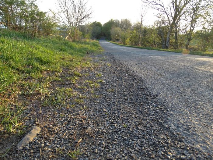 The side of the road. Road Plant Transportation Tree The Way Forward Direction Nature No People Day Tranquility Diminishing Perspective Grass Land Landscape Tranquil Scene Growth Empty Road Asphalt Outdoors Dirt Surface Level Roadside Roads
