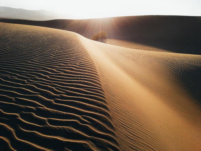 Bright sun over desert