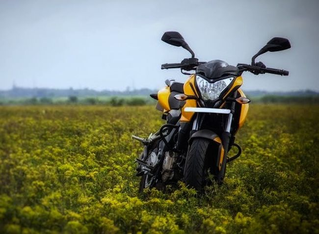 Pulsar 200 NS Shibu_lex Motorcycle Rural Scene Adventure Field Summer Riding Nature Biker Day Outdoors Sky People Grass Motocross Close-up Meadow Sport No People EyeEmNewHere