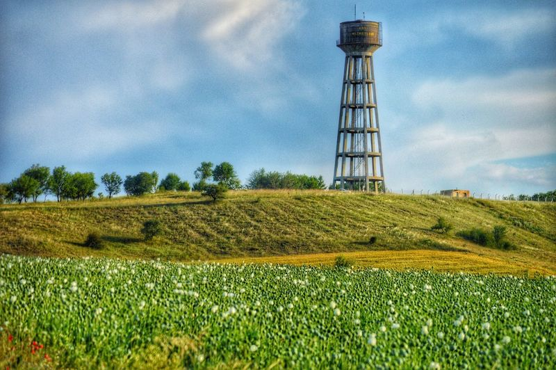 Water tower Watertower Tower Plant Sky Field Land Landscape Cloud - Sky Nature Rural Scene Grass Environment Farm