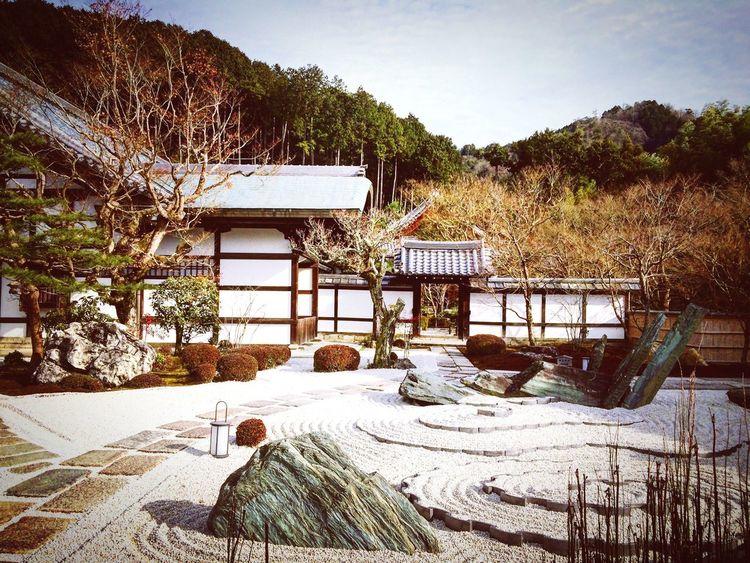 圜光寺 一乗寺 京都 Kyoto 庭園 寺社仏閣 Relaxing