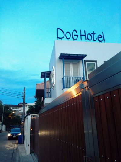 Where you go when you're kicked out of the Dog House Dog Hotel Dog House Pets Hotel Hotels Bangkok Bangkok Thailand. Local Local Living Local People Local Business