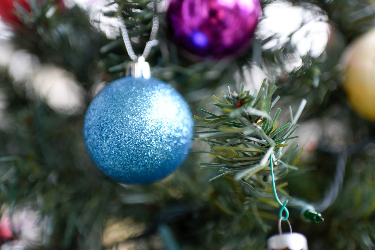 celebration, tradition, decoration, cultures, christmas, easter, christmas decoration, easter egg, holiday - event, christmas ornament, hanging, bauble, christmas bauble, christmas tree, holiday, close-up, religion, celebration event, no people, traditional festival, indoors, tree, day