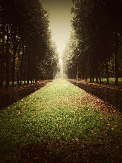 Parks Park Autumn Autumn Colors Autumn🍁🍁🍁 Colors Of Autumn Open Edits Ryazan' Ryazan