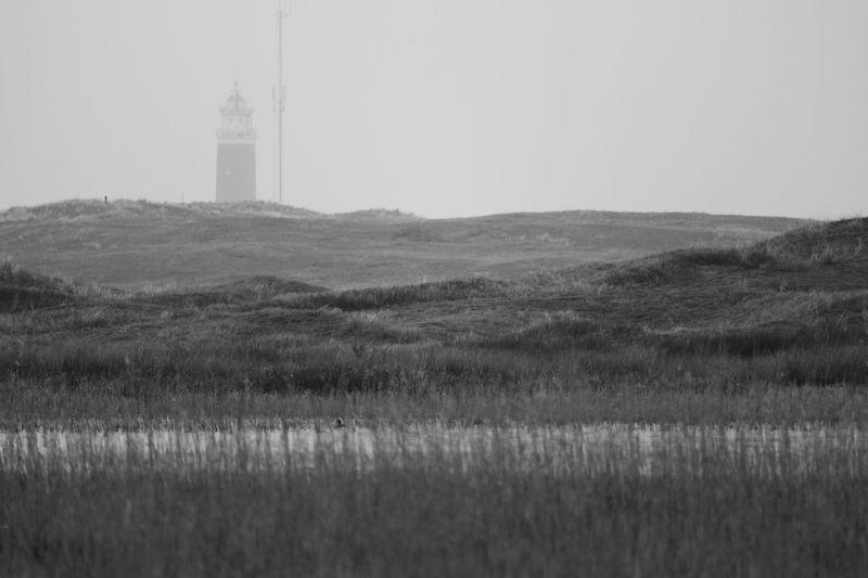 Lighthouse Texel  Niederlande De Slufter