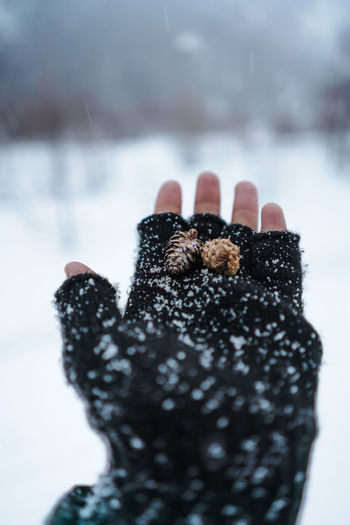 Close-up of person hand on snow
