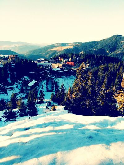 Mountain Snow ❄ Vlasic Bosna I Hercegovina
