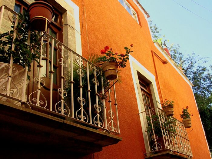 Beautifully Organized Guanajuato's colorful houses Building Exterior Architecture Built Structure Outdoors No People Day Mexico Guanajuato