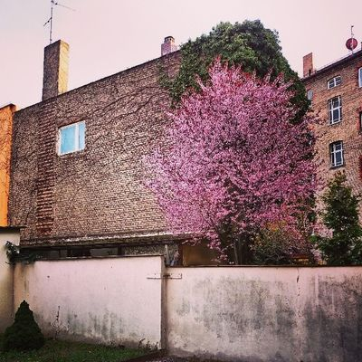 Hinterhof SanktJohannis Nürnberg Franken